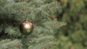 Decorated Christmas tree on blurred, black background stock video footage