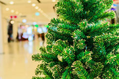 Decorated Christmas tree on blurred, sparkling and fairy backgr. Christmas tree and blur background at shopping mall Stock Photos
