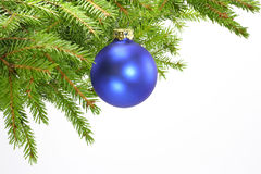 Decorated christmas tree bough. On a white background Royalty Free Stock Image