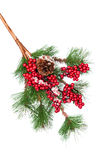 Decorated Christmas tree branch Royalty Free Stock Photos