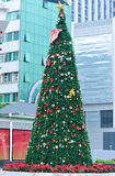 Decorated christmas tree in city Royalty Free Stock Image