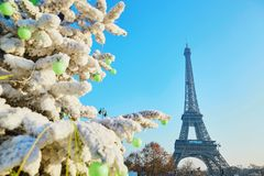 Christmas tree covered with snow near the Eiffel tower in Paris Royalty Free Stock Photos
