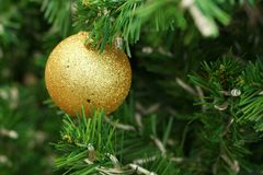 Decorated Christmas tree on the eve of Christmas day Royalty Free Stock Photos