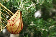 Decorated Christmas tree on the eve of Christmas day Stock Image