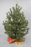 Decorated christmas tree with gifts. Decorated christmas pine tree with gifts Stock Images