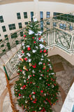 Decorated Christmas tree insade of the beautiful buildings.  Stock Photos