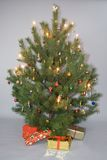 Decorated christmas tree with lights and gifts. Decorated christmas pine tree with lights and gifts Stock Photography