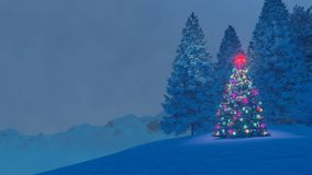 Decorated christmas tree on mountain top at winter night Stock Photos