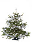 Decorated christmas tree with silver balls Royalty Free Stock Images