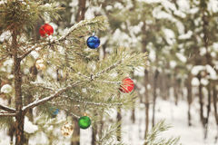Decorated Christmas tree in a snowy pine forest with retro effec Stock Photos