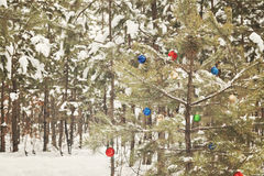 Decorated Christmas tree in a snowy pine forest with retro effec Royalty Free Stock Photography