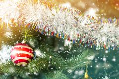 Decorated Christmas tree, sparkling and fairy background with co stock images