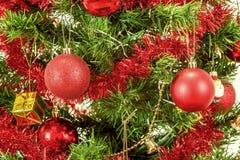 Decorated christmas tree on white background. Detail of decorated christmas tree with red balls Stock Photo
