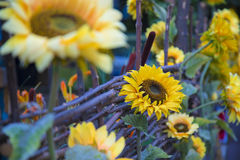 Decorated close-up sunflower fence yard in the village. Decorated close-up sunflower fence yard near the house in the village Stock Image
