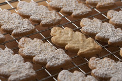 Decorated cookies fresh from the oven. Freshly baked cookies with powder sugar Stock Image