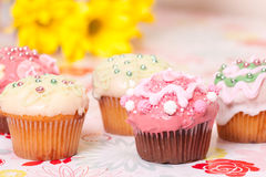 Decorated cup cakes Royalty Free Stock Photos
