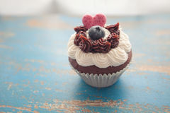 Decorated Cupcake on Rustic Blue Table Top Royalty Free Stock Photography