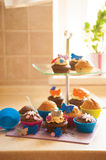 Decorated cupcakes Royalty Free Stock Photo