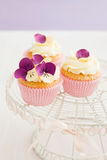 Decorated cupcakes. Cupcakes with buttercream and pansy sugar flowers Stock Photography