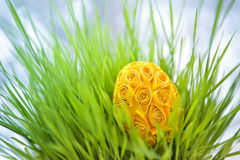 Decorated easter egg in the grass Stock Image