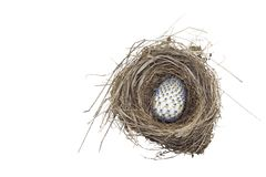 Decorated easter egg in the nest Stock Image