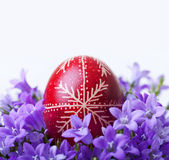 Decorated easter egg with spring flowers Stock Photo