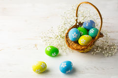 Decorated Easter eggs in the basket. With small white baby's breath flowers on a white wooden background, space for text, copy space Royalty Free Stock Photos