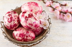 Decorated Easter eggs and cherry blossom tree Royalty Free Stock Photos
