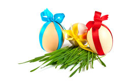 Decorated easter eggs in the grass Royalty Free Stock Photo