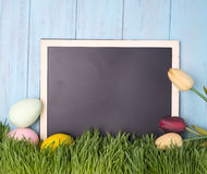 Decorated easter eggs in the grass Stock Photos