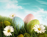 Decorated easter eggs in the grass with daisies stock image