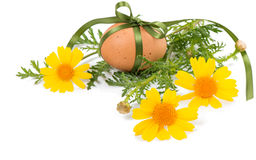 Decorated egg and spring flowers Royalty Free Stock Photography