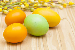 Easter eggs and branch of willow - symbols of East. Painted eggs decorated by various colors before Easter. Eggs covered by lacquer. Painted eggs are the part of Stock Photography
