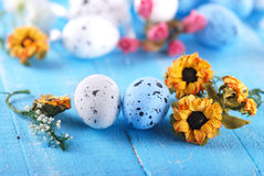 Decorated eggs for Easter Royalty Free Stock Image
