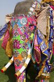 The decorated elephant. Royalty Free Stock Images