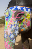 The decorated elephant. Decorated elephant at the annual elephant festival in Jaipur, India royalty free stock images