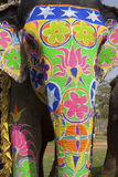 Decorated elephant. At the elephant festival in Jaipur. India Stock Image