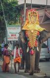 Decorated elephant Royalty Free Stock Photo
