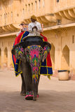 Decorated elephant in Jaipur, Rajasthan, India. JAIPUR, INDIA - NOVEMBER 10, 2012: Decorated elephant on the road at Amber Fort in Jaipur, Rajasthan, India stock photos