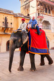 Decorated elephant with tourist walking in Jaleb Chowk main cou. Rtyard in Amber Fort, Rajasthan, India. Elephant rides are popular tourist attraction in Amber Stock Images
