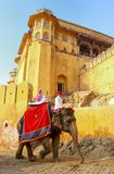 Decorated elephant with tourists going on the cobblestone path t. O Amber Fort near Jaipur, Rajasthan, India. Elephant rides are popular tourist attraction in Stock Photo