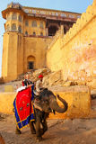 Decorated elephant with tourists going on the cobblestone path t. O Amber Fort near Jaipur, Rajasthan, India. Elephant rides are popular tourist attraction in Royalty Free Stock Photos