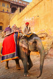 Decorated elephant with tourists going on the cobblestone path t. O Amber Fort near Jaipur, Rajasthan, India. Elephant rides are popular tourist attraction in stock photos