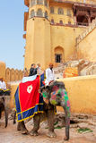 Decorated elephant with tourists going on the cobblestone path t. O Amber Fort near Jaipur, Rajasthan, India. Elephant rides are popular tourist attraction in Stock Image