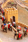 Decorated elephants going on the cobblestone path to Amber Fort Stock Photo