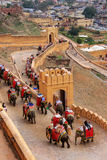 Decorated elephants going on the cobblestone path to Amber Fort Royalty Free Stock Photography