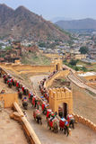 Decorated elephants going on the cobblestone path to Amber Fort Royalty Free Stock Image
