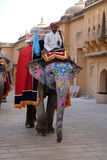 Decorated elephants waiting tourists at Amber Fort in Jaipur Royalty Free Stock Photos