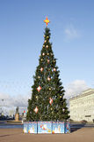Decorated fir tree. In the street of a city Royalty Free Stock Photos