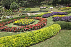The decorated flower beds Stock Photo